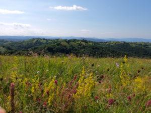 Krajina rumunského Banátu, kam krajané přišli prvně