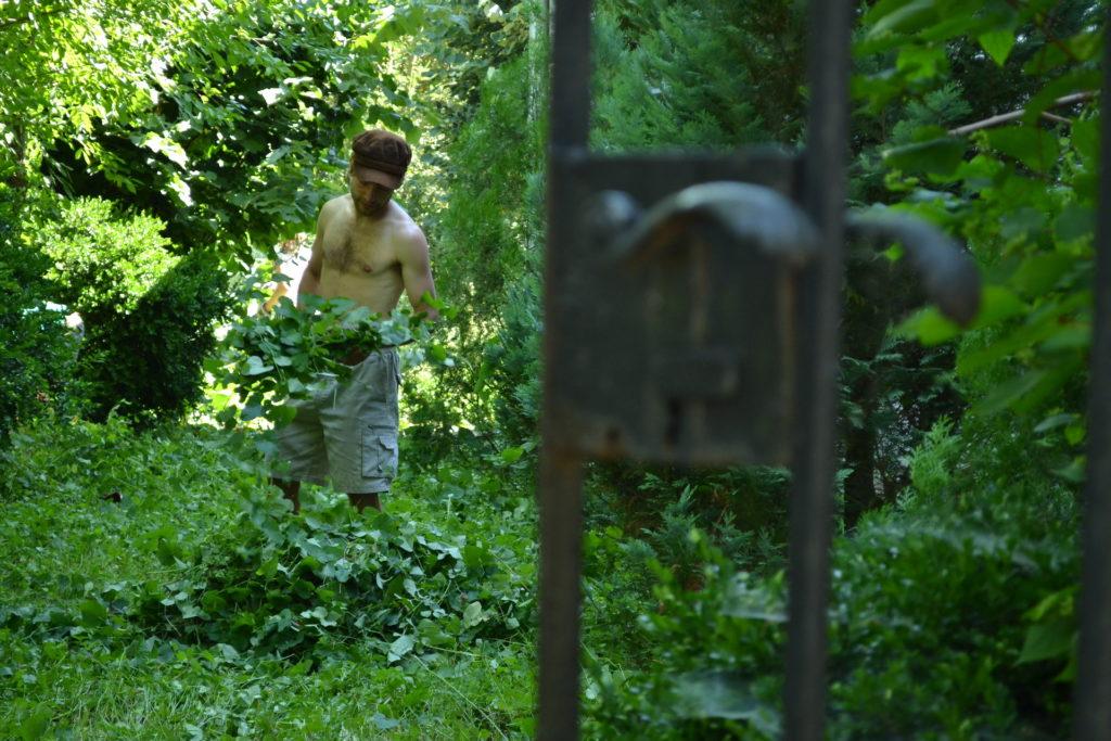 Úklid a údržba kostelní zahrady