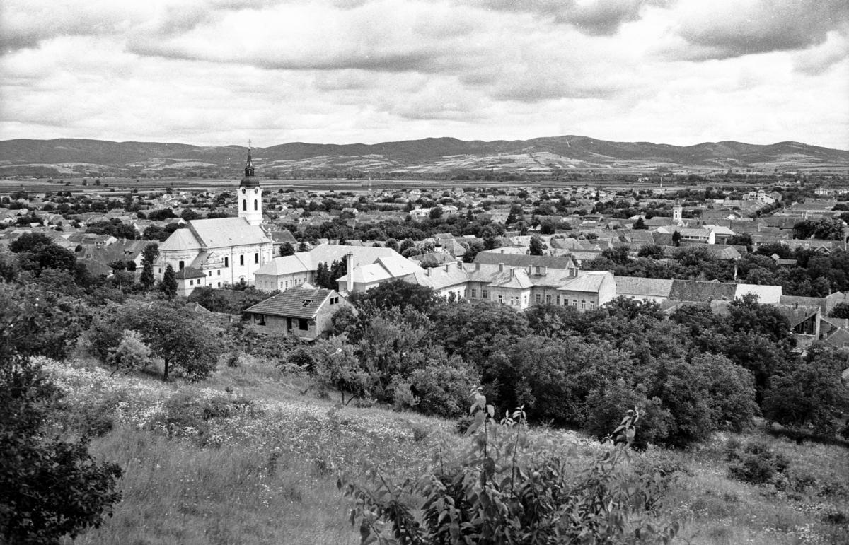 Bela Crkva z vyhlídky nad městem