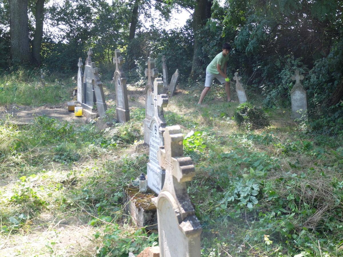 Záchrana drobných památek - příklad vysvobezení náletovými dřevinami zarůstající staré části hřbitova v Češku Selu a průběžná údržba