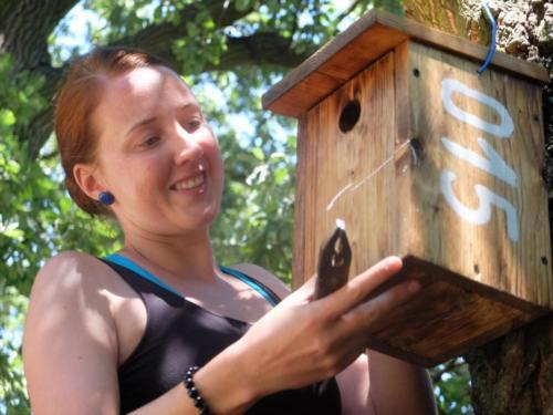 Budky pro ptacvo v Češku Selu, Kruščici i Bele Crkvni
